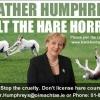 2014 Halt Hare Coursing