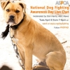 ASPCA national dog fighting awareness day April 8th