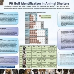 Pit Bull ID in Shelters