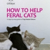 TNR Manual for Ireland Cover