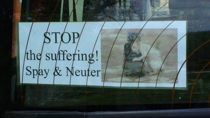 FCI Stop the Suffering
