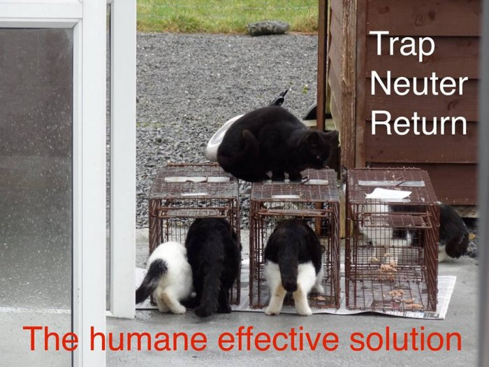 FCI The Humane Effective Solution