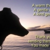 Thank You by muriell
