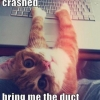 Fix it cat to the rescue