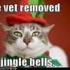 The vet removed my jingle bells
