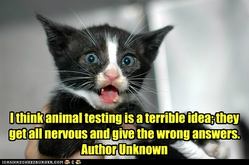 pro animal testing speech It is estimated that each year 26 million animals in the united states are used for animal testing animals are used to test scientific developments and commercial products.