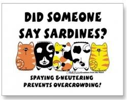 Did Someone Say Sardines?