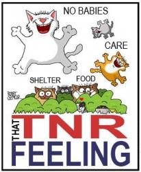 That TNR Feeling