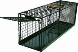 MDC Eezicatch Cat Trap